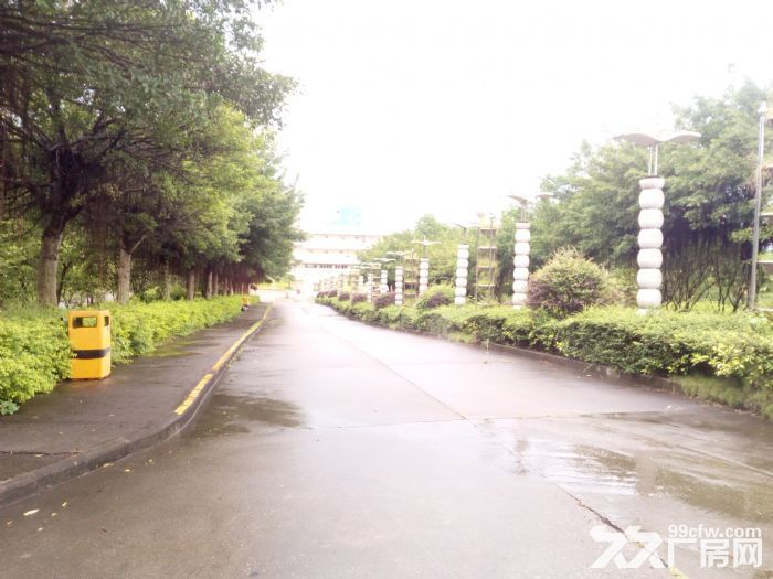 共和花园式40000厂房招租(可分租5000方以上)-图(1)