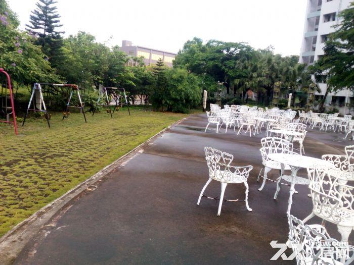 共和花园式40000厂房招租(可分租5000方以上)-图(8)