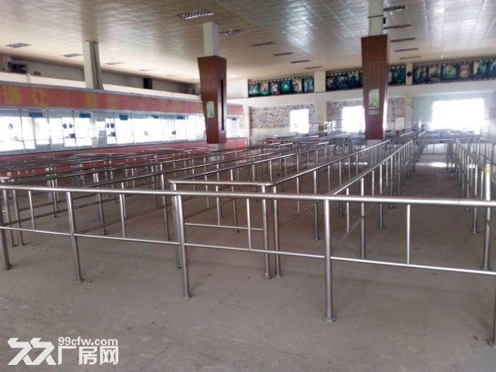 共和花园式40000厂房招租-图(1)