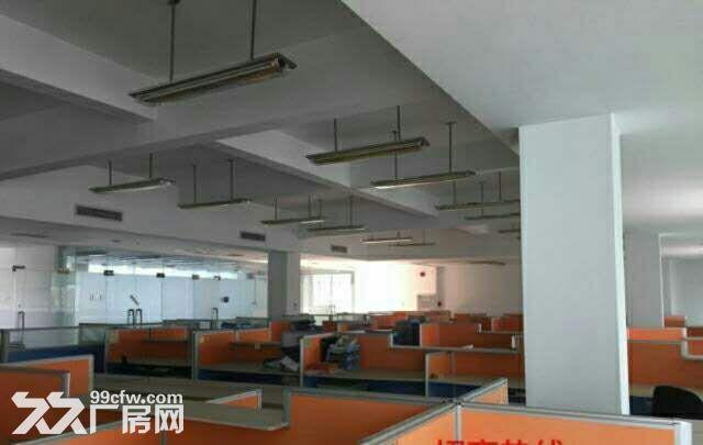 共和花园式40000厂房招租-图(4)