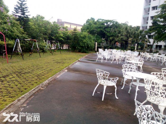共和花园式40000厂房招租-图(8)