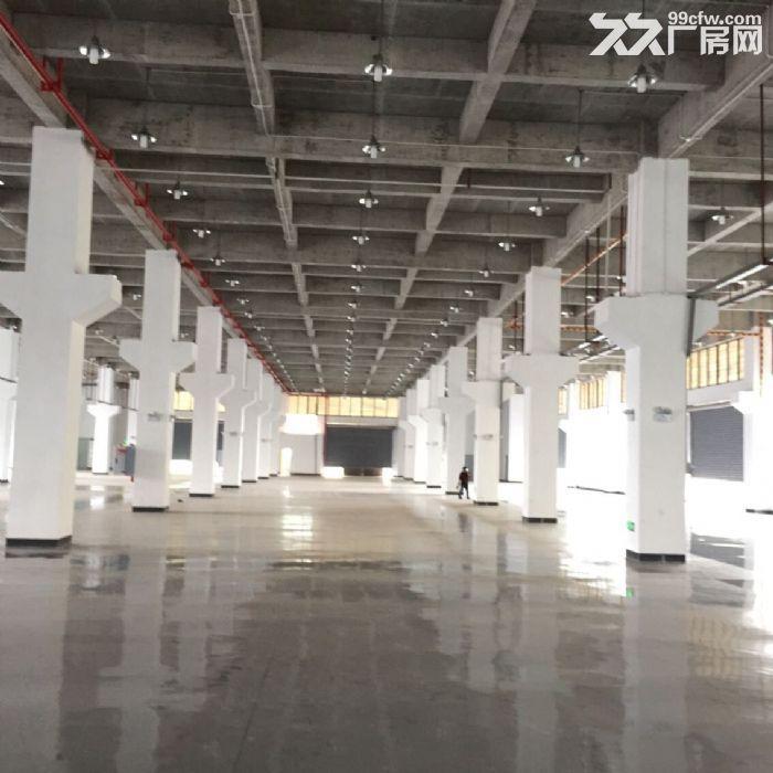 江北鱼嘴鱼复工业园62000平米标厂房可分租-图(3)