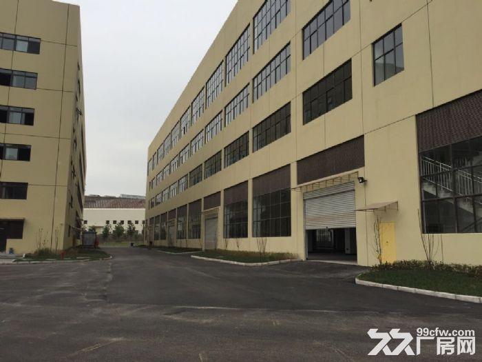 江北鱼嘴鱼复工业园62000平米标厂房可分租-图(8)