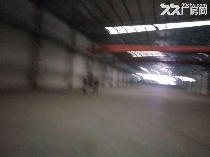 大桥镇205国道厂房仓库800平方行车2部-图(1)