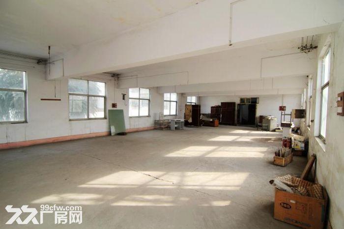 洛阳市老城区5000平房屋出租(出售)-图(5)