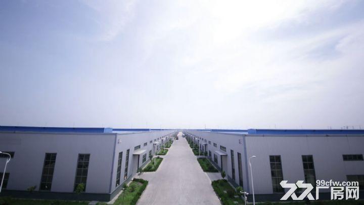 全新优质厂房出租,水电气配套齐全,厂区规范宽敞,交通便利。-图(3)