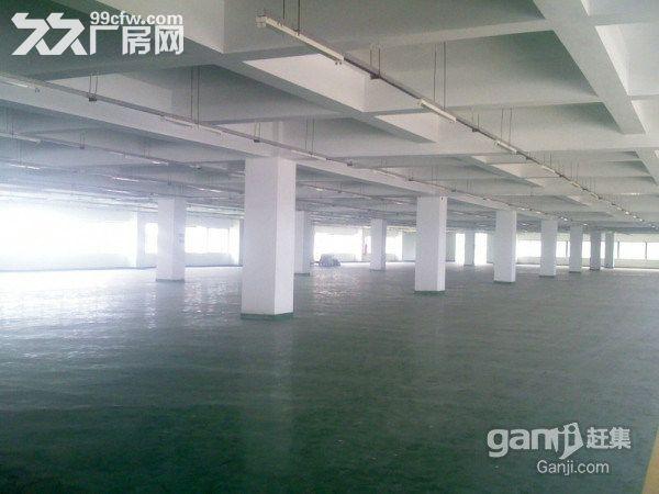 龙岗工业城红本独院出售16000平米-图(2)