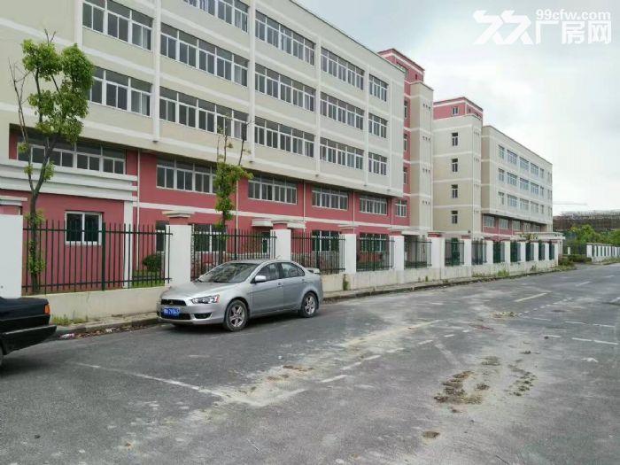 嘉定外冈工业区,独门独院13300平方2幢3层厂房出租,1楼高度8米、-图(1)