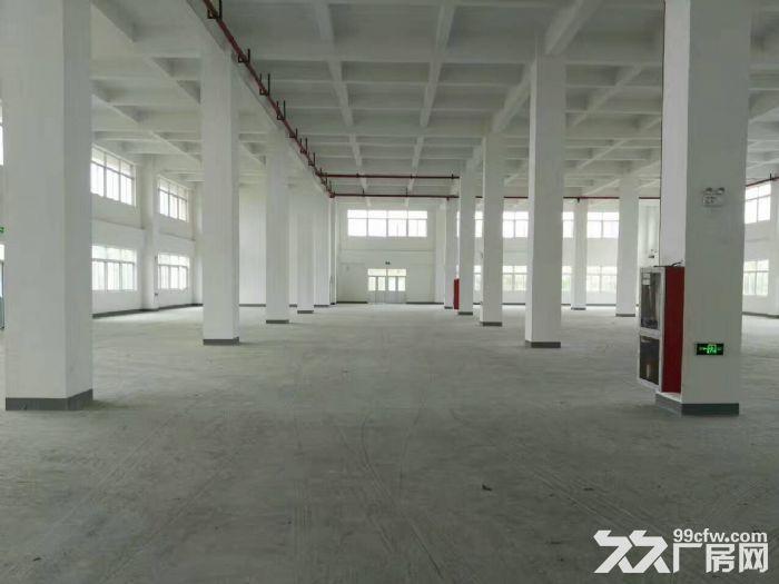 嘉定外冈工业区,独门独院13300平方2幢3层厂房出租,1楼高度8米、-图(2)