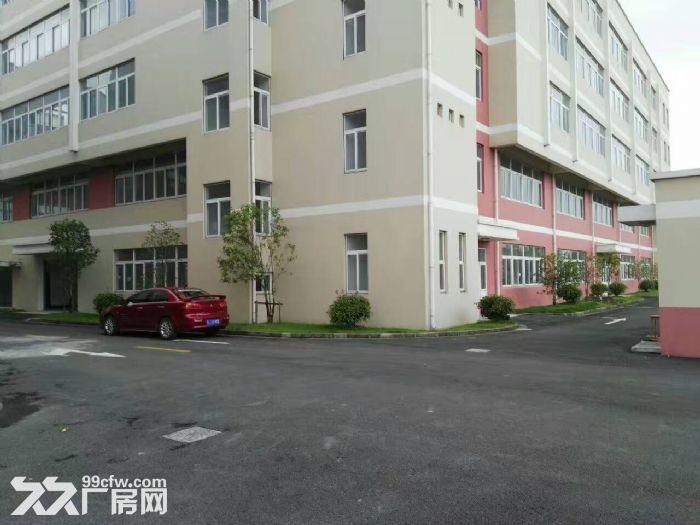 嘉定外冈工业区,独门独院13300平方2幢3层厂房出租,1楼高度8米、-图(3)