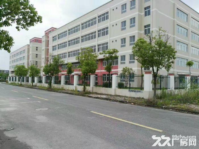 嘉定外冈工业区,独门独院13300平方2幢3层厂房出租,1楼高度8米、-图(5)