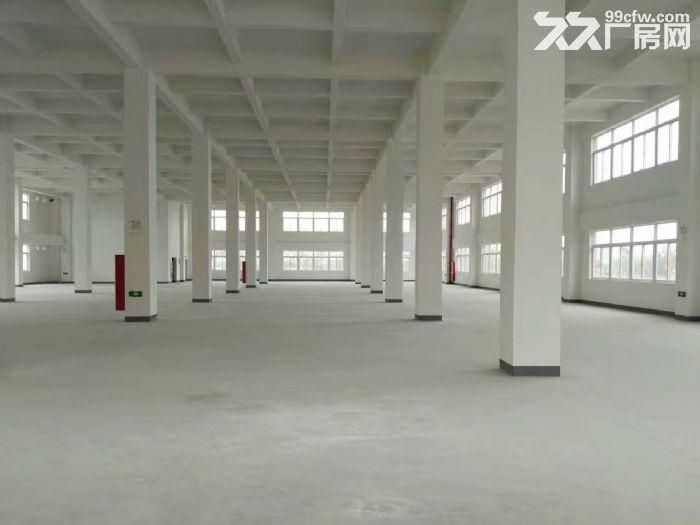 嘉定外冈工业区,独门独院13300平方2幢3层厂房出租,1楼高度8米、-图(6)