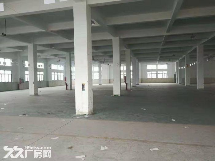南翔工业区7200平米外环边上独门独院厂房出租,场地大,形象好,产证齐全,104-图(4)