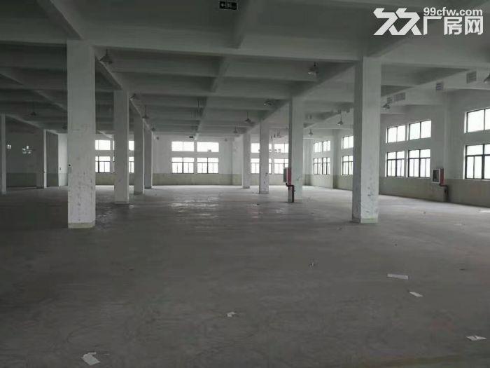 南翔工业区7200平米外环边上独门独院厂房出租,场地大,形象好,产证齐全,104-图(5)