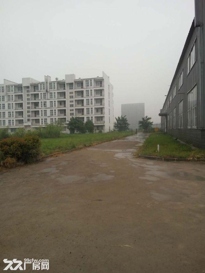 25000平米仓库,可分切-图(4)