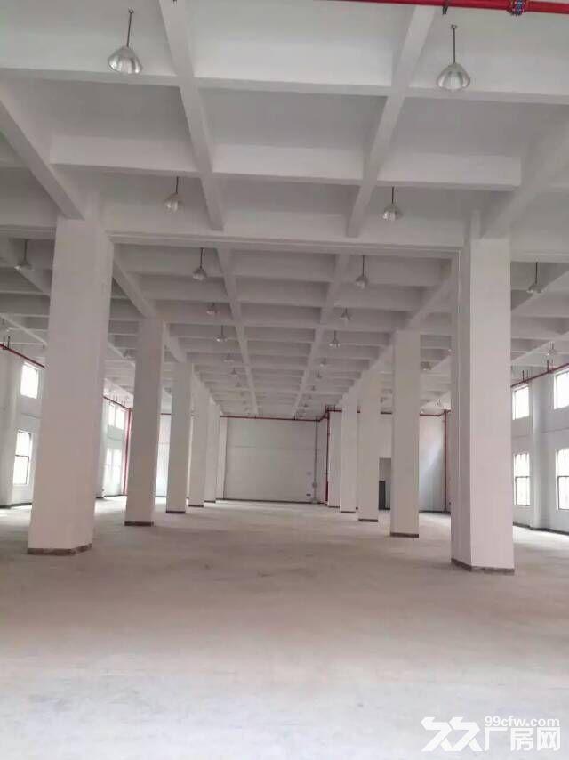 车墩厂房大平层1300平厂房货梯宿舍适研发无税收要求-图(4)