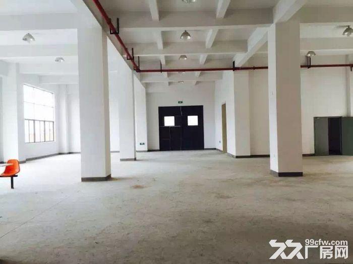 车墩厂房大平层1300平厂房货梯宿舍适研发无税收要求-图(6)