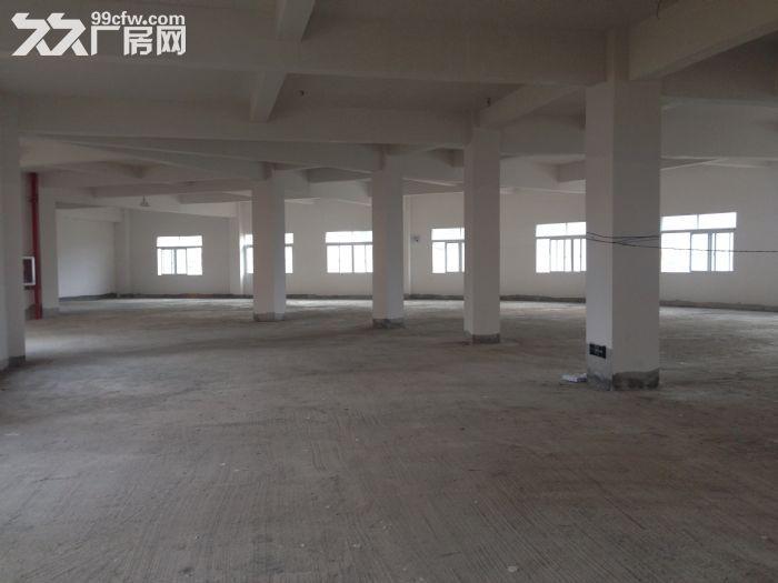 出租出售标准厂房,仓库-图(2)