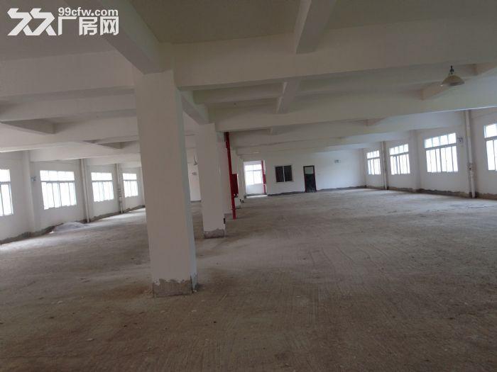 出租出售标准厂房,仓库-图(6)