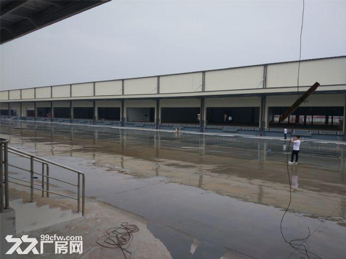 东九路与望仙路附近6000㎡新建轻钢结构层高9米配电300KW-图(4)