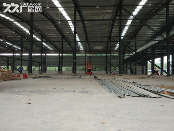 东九路与望仙路附近6000㎡新建轻钢结构层高9米配电300KW-图(5)