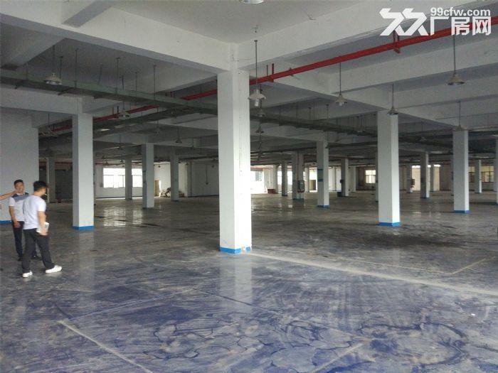 东九路与望仙路附近6000㎡新建轻钢结构层高9米配电300KW-图(8)