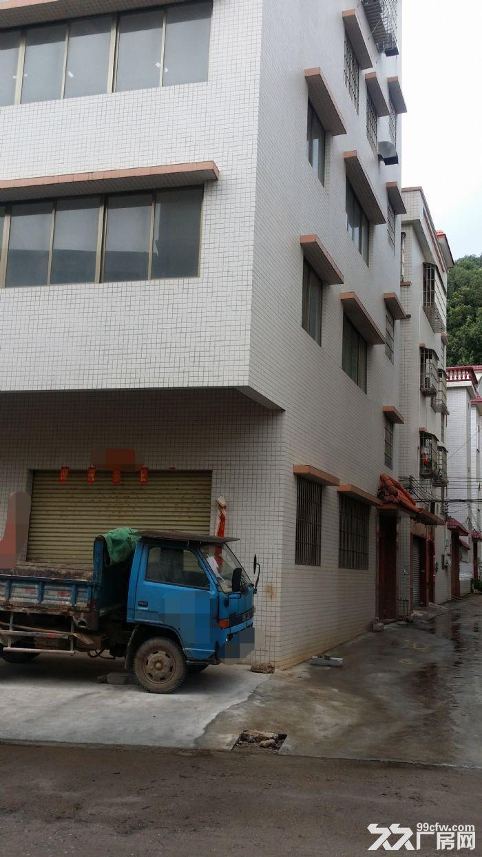 外海独栋430方厂房招租(共4层)-图(1)