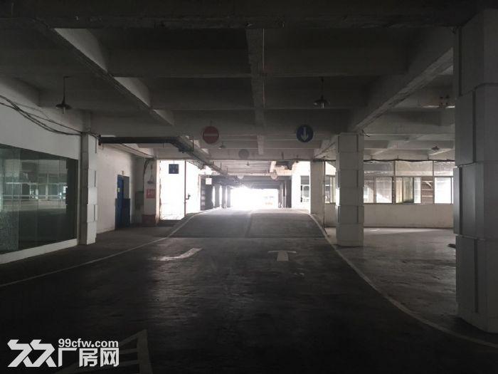 海峡路临街商铺、展厅、仓库约10347㎡出租,15㎡起租-图(4)
