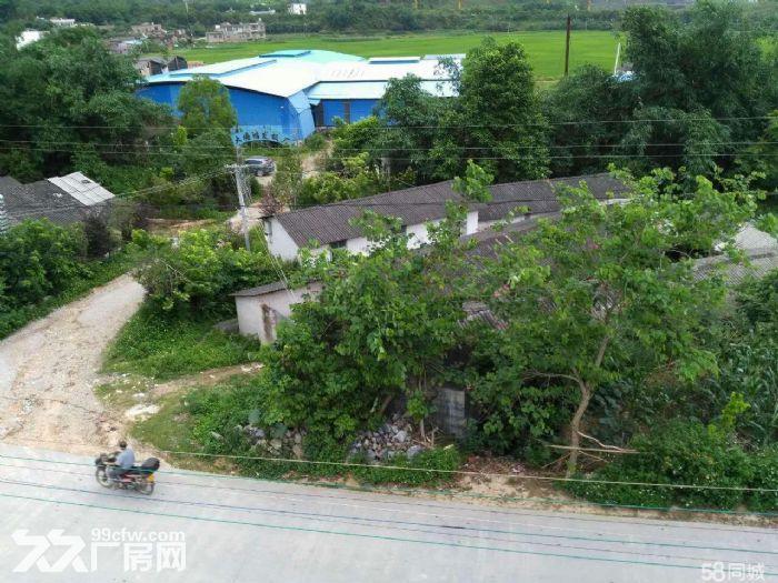 玉州区大塘镇模板厂房出租-图(1)