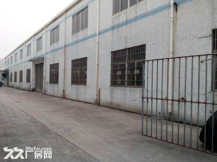 潮连18000方单一层厂房招租(可分租)-图(2)