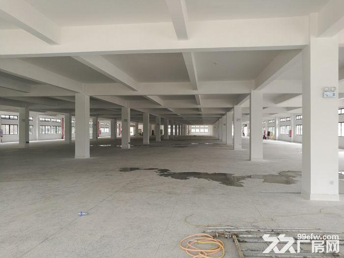 福清宏路新建厂房出租-图(5)