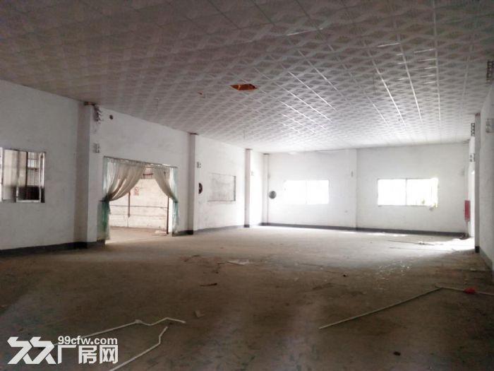 礼乐1000方单一层仓库招租-图(3)