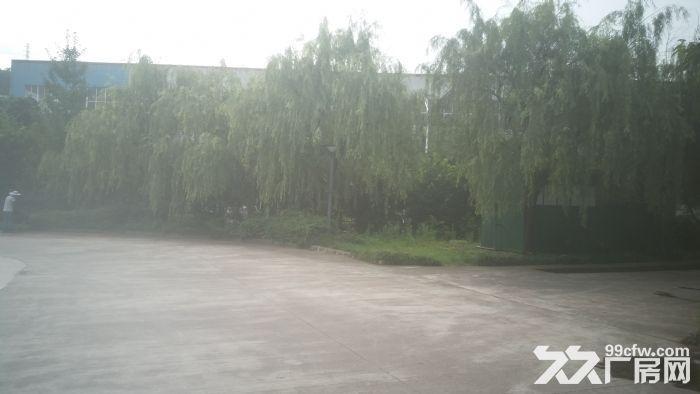 园区标准钢构厂房13米高5吨行车专变大车进出方便-图(3)