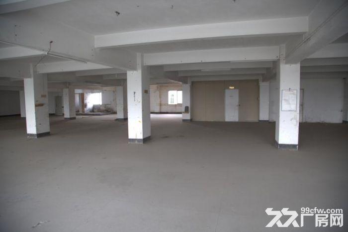 顺德龙江整幢商业楼出售,一线马路面,交通便利-图(1)