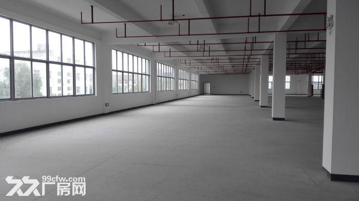 V竹山路地铁站综合楼起租1700平适合健身馆酒店-图(2)