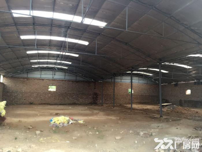 出租大型厂房可用于库房车间-图(4)
