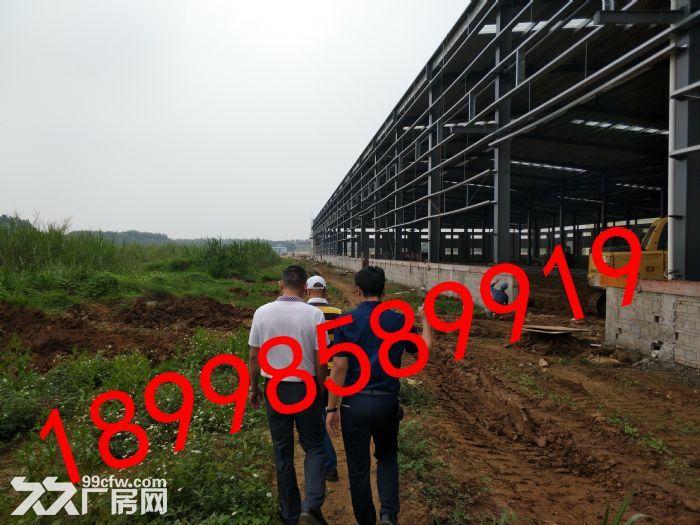 大量厂房仓库和地皮租售,面积从1000−−70000均有-图(8)