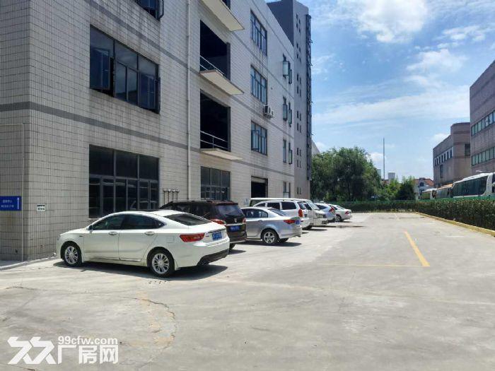 九亭漕河泾底楼沿街195平小厂房,成熟园区赠免租期-图(1)