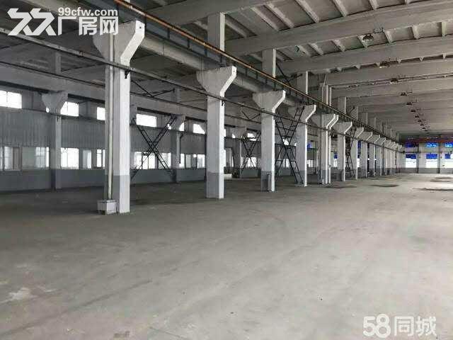 九亭单层仓库280,450,1300平米出租-图(1)