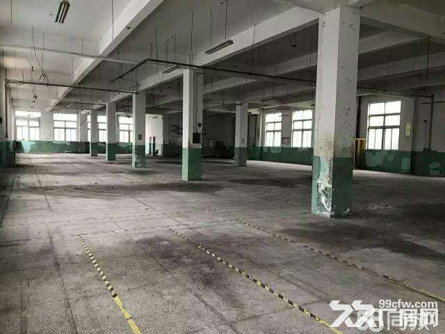 九亭单层仓库280,450,1300平米出租-图(2)