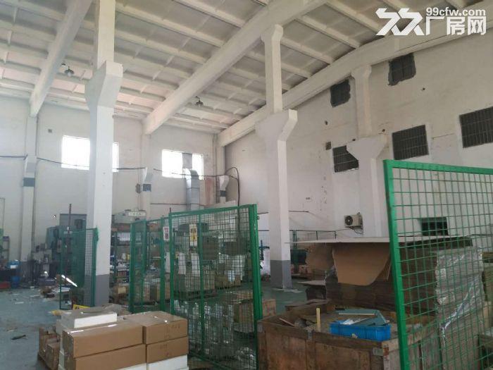 九亭单层仓库280,450,1300平米出租-图(4)