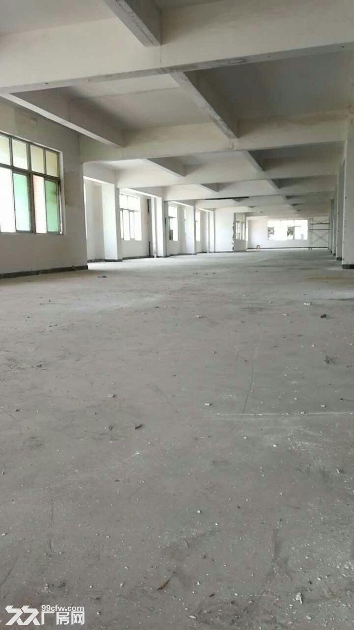 绿证的优质厂房仓库办公4000平可分租-图(4)
