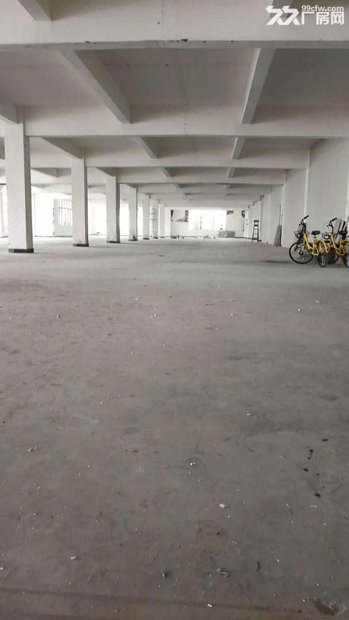 绿证的优质厂房仓库办公4000平可分租-图(3)