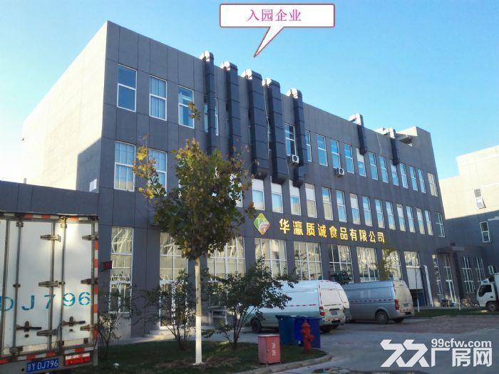 【1200平米独栋厂房】形象绝佳厂办一体可环评!-图(5)