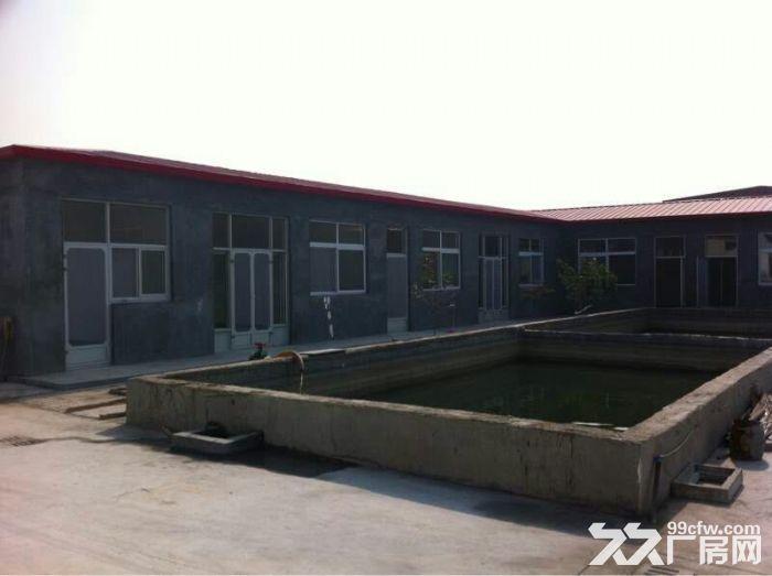 独门独院的优质厂房,交通便利-图(6)