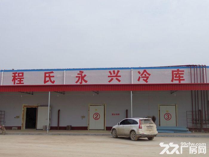 沧县厂房出租场地出租食品生产加工企业,家具、纸箱厂企业-图(5)