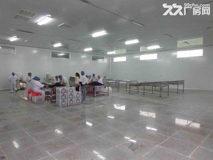 沧县厂房出租场地出租食品生产加工企业,家具、纸箱厂企业-图(7)
