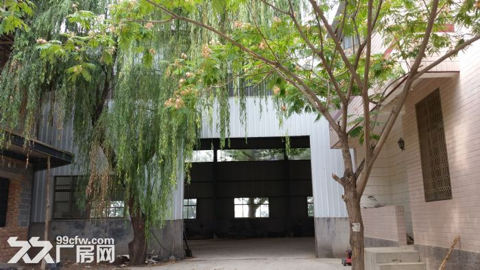 长清平安大型钢结构,楼房出租-图(1)