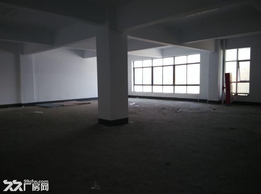 罗庄南外环厂房出租、出售价格便宜。面积大,位置佳-图(4)