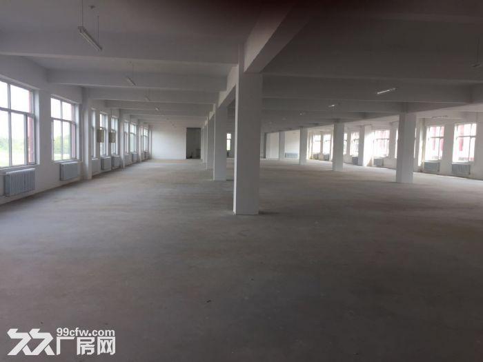 江北全新厂房出租设备齐全·-图(6)